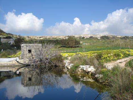 Teich der Kalypso