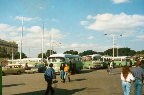 Grüne Malta-Busse