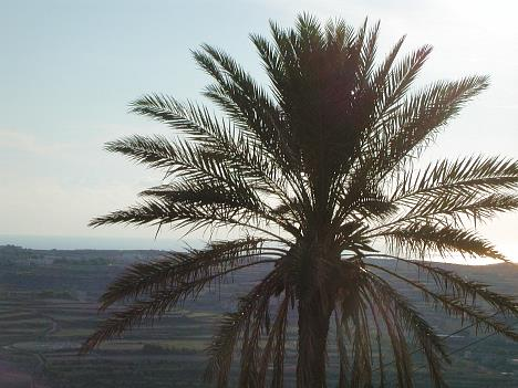 Abendstimmung in Gozo